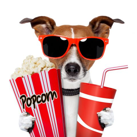 movie-night-clipart-9cp4q9xcE